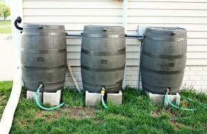How to connect two rain barrels
