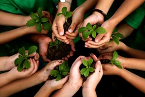 How to Protect Our Environment – 22 Tips to protect environment