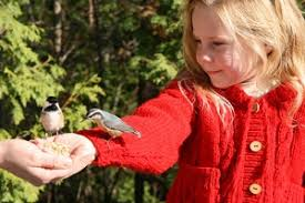 7 Helpful Lessons to Learn from Nature
