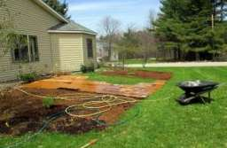 How to Mulch Your Lawn Properly