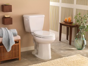 Best High/Higher Toilets For The Elderly & Seniors
