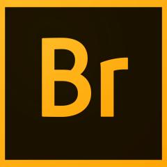 Adobe Bridge for iPad Free Download   iPad Utilities