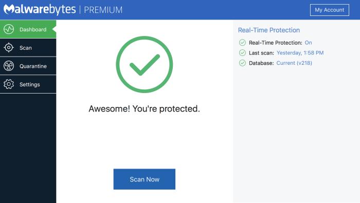 Download Malwarebytes for iPad