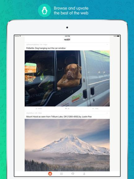 Download Reddit for iPad