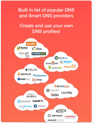 Download DNS for iPad