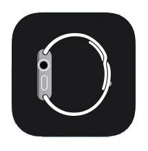 Download Apple Watch App for iPad