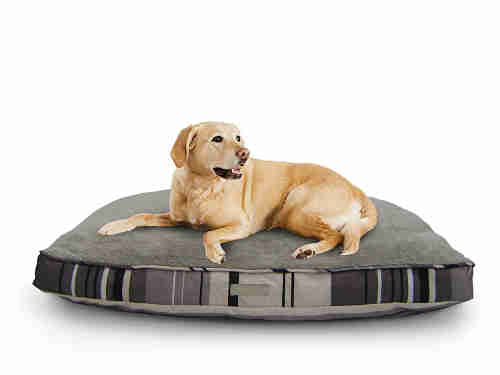 best dog bed for chewers 6