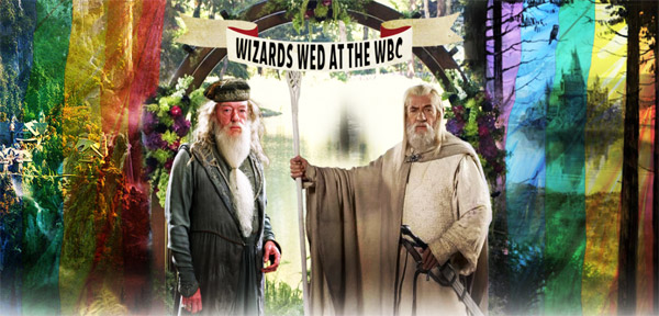 Gandalf and Dumbledore are getting married!