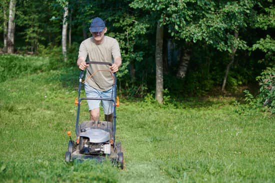 lawn mower buyers guide