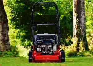How Late Is Too Late To Mow Your Lawn
