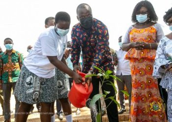 [Photos] Ministry Of Lands And Natural Resources Launches 1 Student, 1 Tree Project