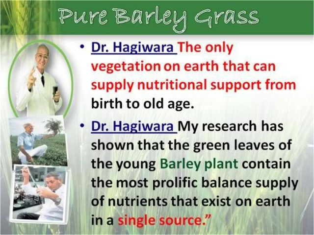 best green barley grass capsule