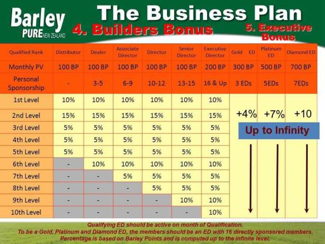 Sante Pure Barley Business Plan