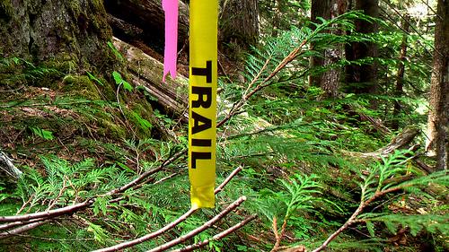 trail-flag