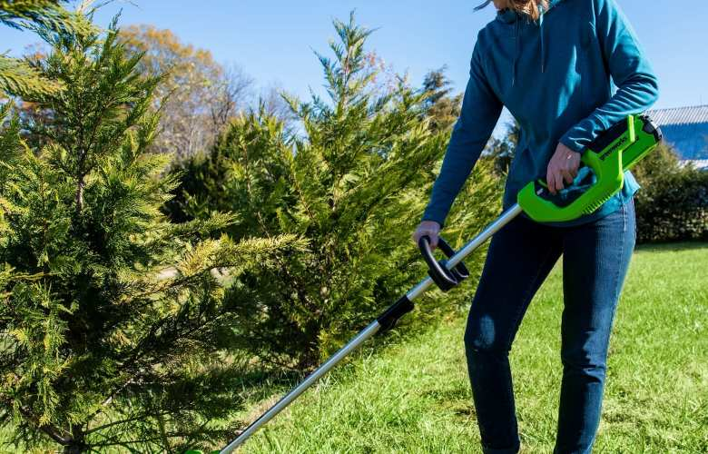 Best Battery Powered Weed Eater | Best Home Gear