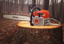 Cut a Tree Stump with a Chainsaw