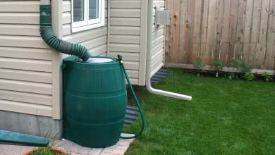 Photo of How To Connect Rain Barrels