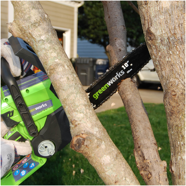 Best Electric Chainsaw Reviews 2019