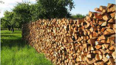 How Much Is a Cord Of Wood   Best Home Gear