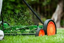 Photo of The 7 Best Reel Mowers For 2020 [Reviews]