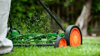 Best Reel Mower | Best Home Gear
