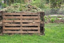 Photo of How to Build DIY Compost Bin With Pallets