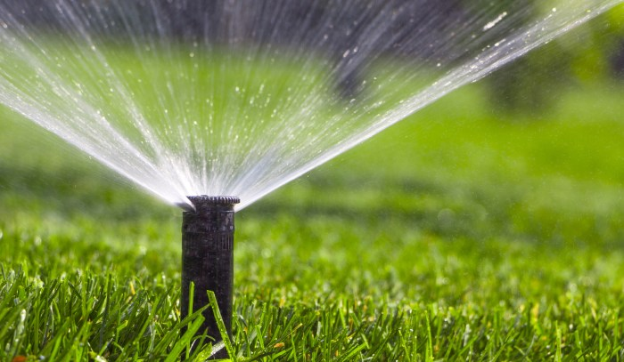 irrigated new lawn | Best Home Gear