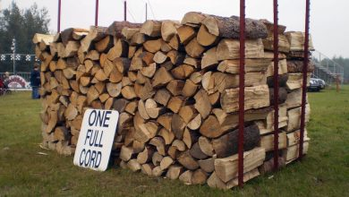 How Much Is a Cord Of Wood | Best Home Gear