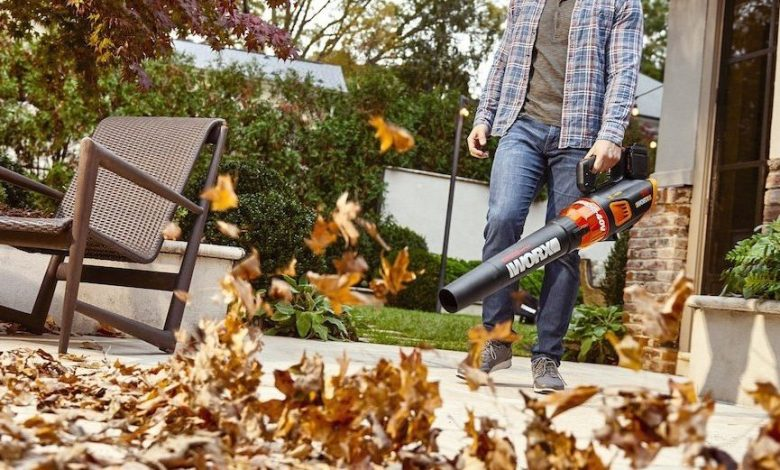 Photo of Best Battery-Powered Lawn Tools [Reviewed For 2020]