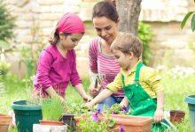 Photo of Best Child Friendly Garden Ideas