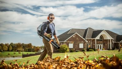 Photo of The Best Stihl Leaf Blower – Reviews For 2020