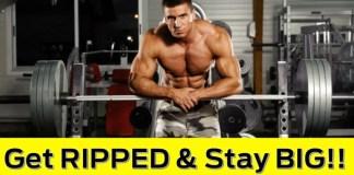 Squat: Gain Strength At Work