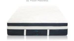 LUCID 14 Inch Plush Memory Foam Mattress Review
