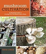 Diy Garden Mushrooms Design31