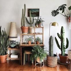 Diy Indoor Plant Display Ideas08