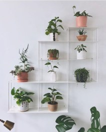 Diy Indoor Plant Display Ideas09
