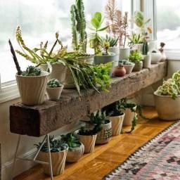 Diy Indoor Plant Display Ideas17