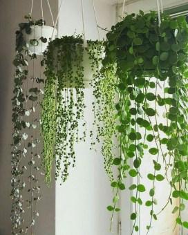 Diy Indoor Plant Display Ideas21