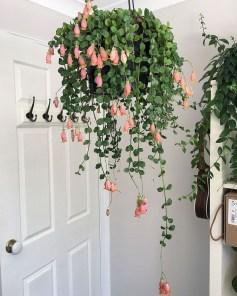 Diy Indoor Plant Display Ideas24