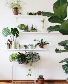 Diy Indoor Plant Display Ideas26