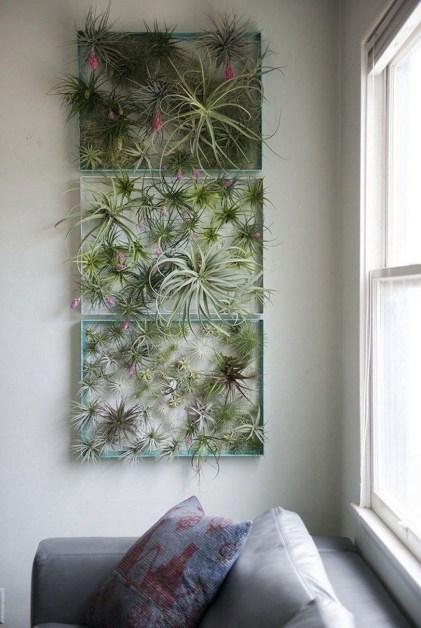 Diy Indoor Plant Display Ideas33