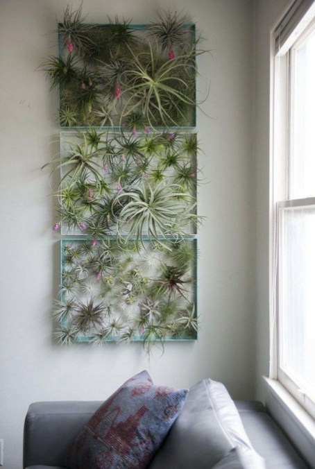 Diy Indoor Plant Display Ideas33