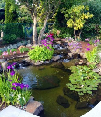 Fabulous Fish Pond Design Ideas For Your Home Yard35