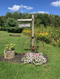 Astonishing Backyard Landscaping Ideas With Flower To Try12