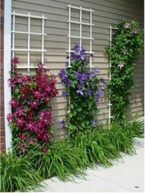 Astonishing Backyard Landscaping Ideas With Flower To Try30
