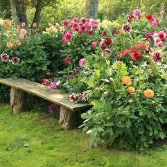 Astonishing Backyard Landscaping Ideas With Flower To Try43