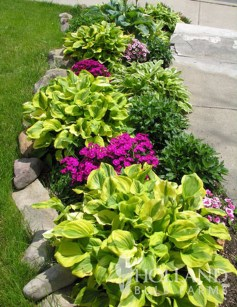 Creative Gardening Design Ideas On A Budget To Try13