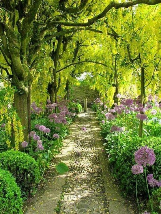Incredibly Magical Tree Tunnels Worldwide You Must Walk Through Them21