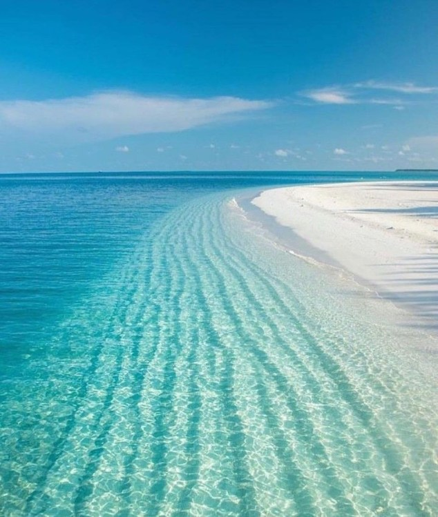 Of The Most Attractive White Sand Beaches You Must See40