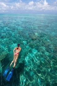 Photos That Will Make You Want To Visit The Maldives16